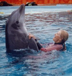 ani williams with dolphin
